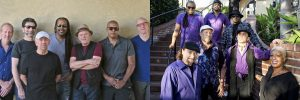 Average White Band and The Family Stone at Thornton Winery Champagne Concert Series